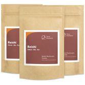 Reishi bio en poudre, 100 g, paquet de 3